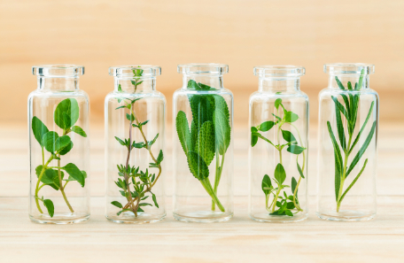 aromaterapia bylinky vo flastickach na prípravu